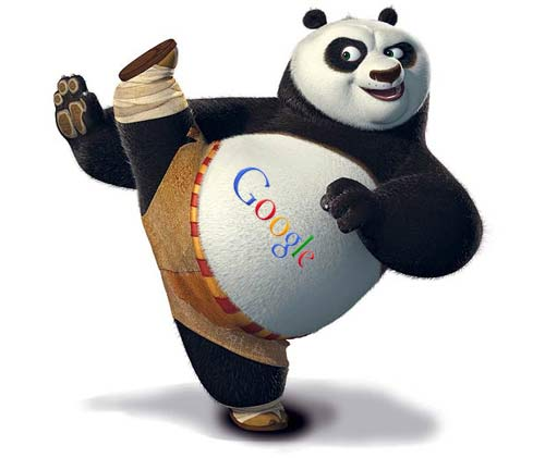 google panda update che fare